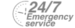 24/7 Emergency Service Pest Control in Bermondsey, Borough, Southwark, SE1. Call Now! 020 8166 9746
